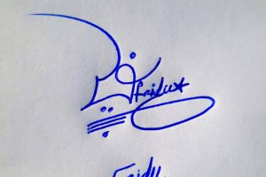 Faidu Name Online Signature Styles